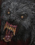 AN AMERICAN WEREWOLF IN LONDON   WOLF  CLOSE -UP
