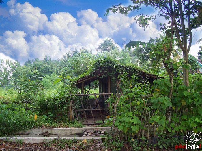 Rumah Hijau by piko-jogja