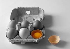 Eggs 2 by JackieCrossley