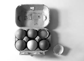 Eggs! by JackieCrossley