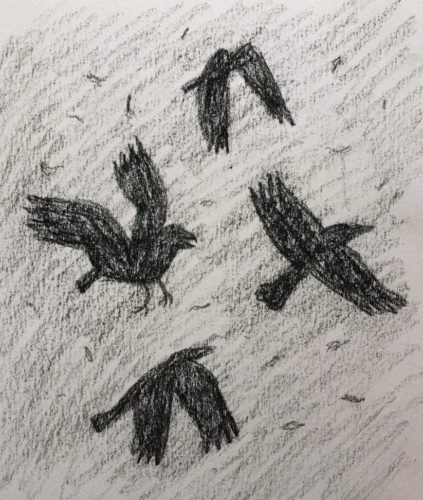 Crow Practice [2/2] by Panolli