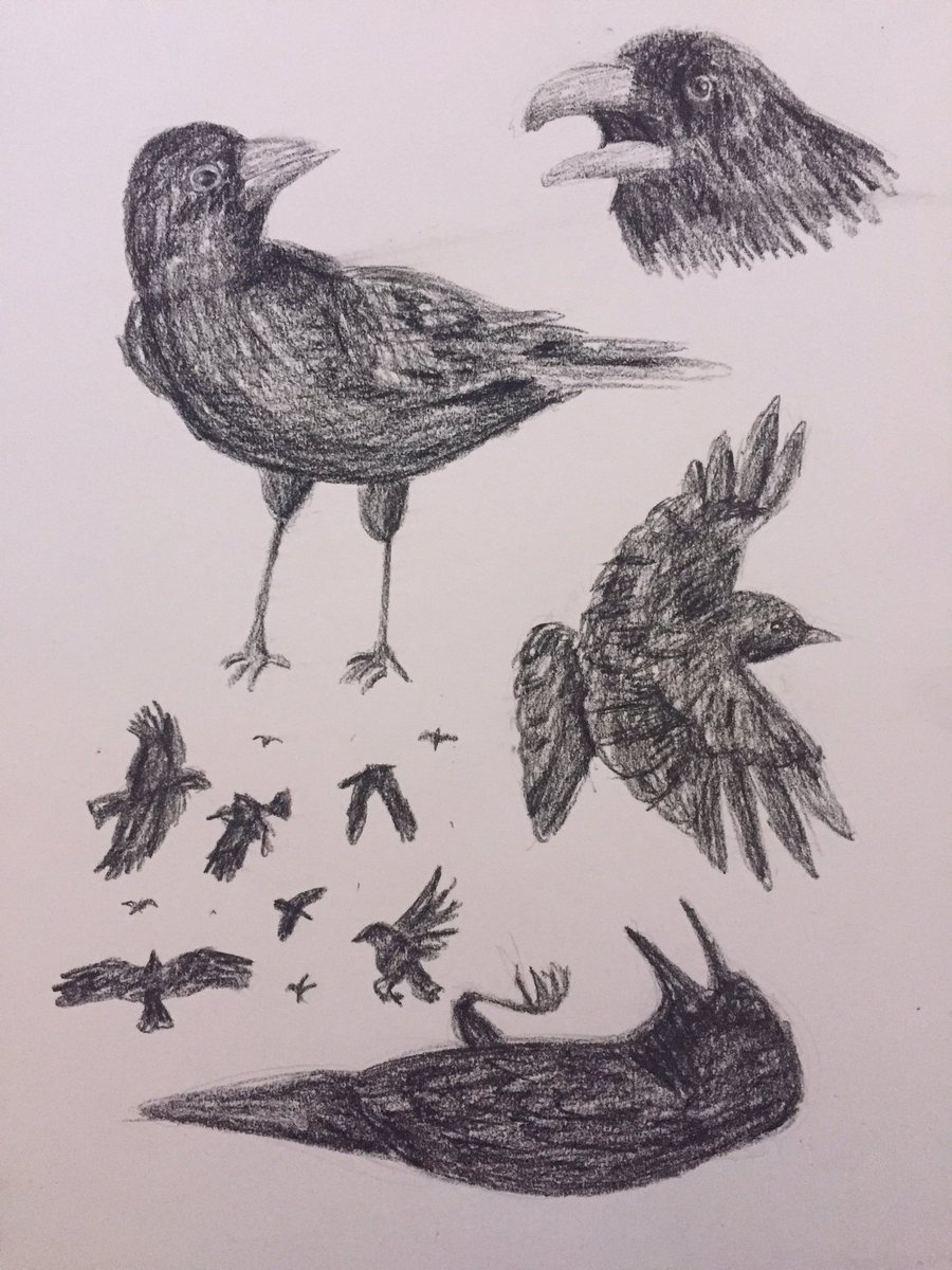 More Crows by Panolli