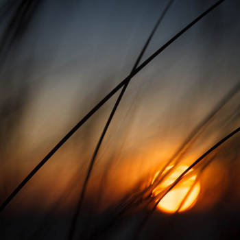 Seize the Sun by dynax700si