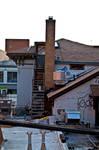 Rooftops Glisten