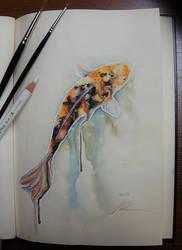 Koi Painting - DailySketch by RandomMumble