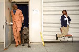 dog show 11 by Trueblood