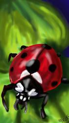 ladybug by sakurablossoms92