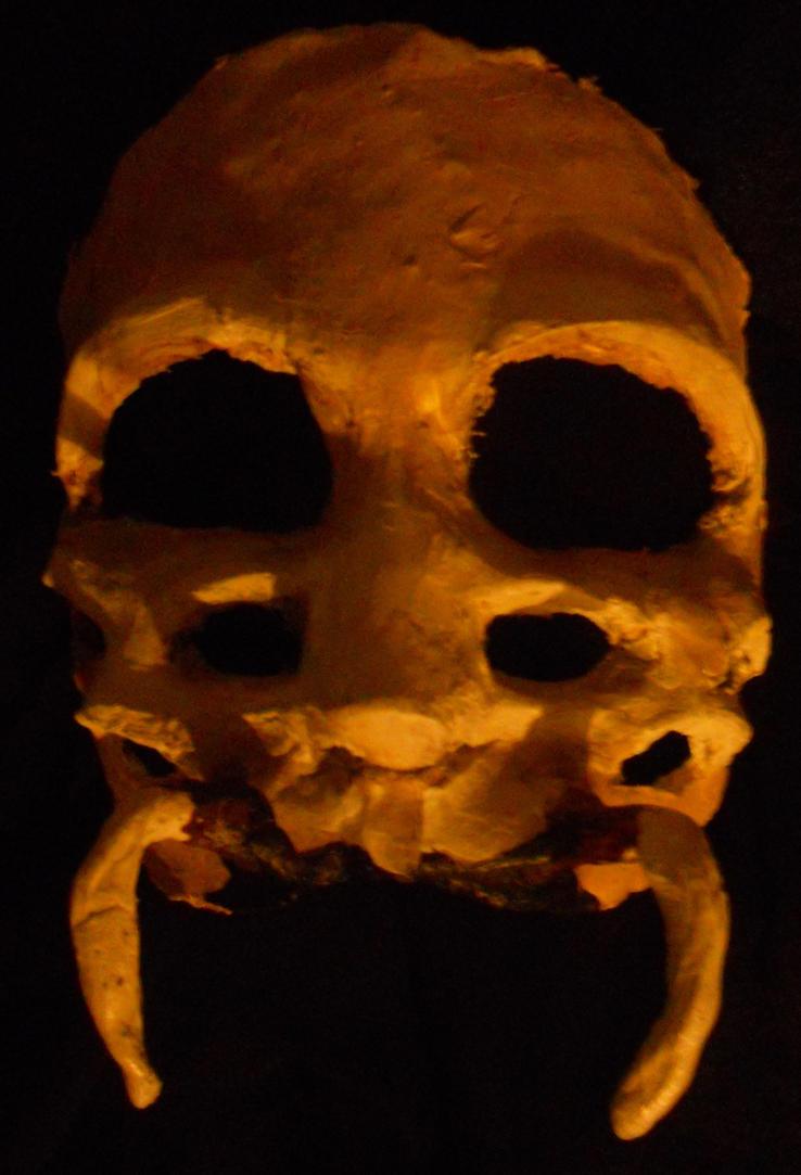 Spider mask by CorvusCallosum