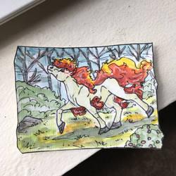 Pony of fire
