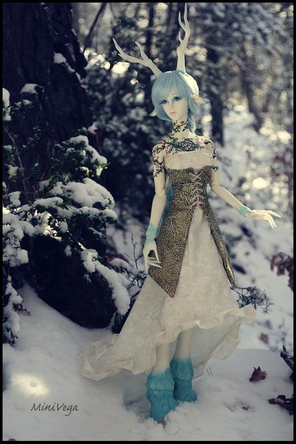 A Few Snowflakes I by MiniVega