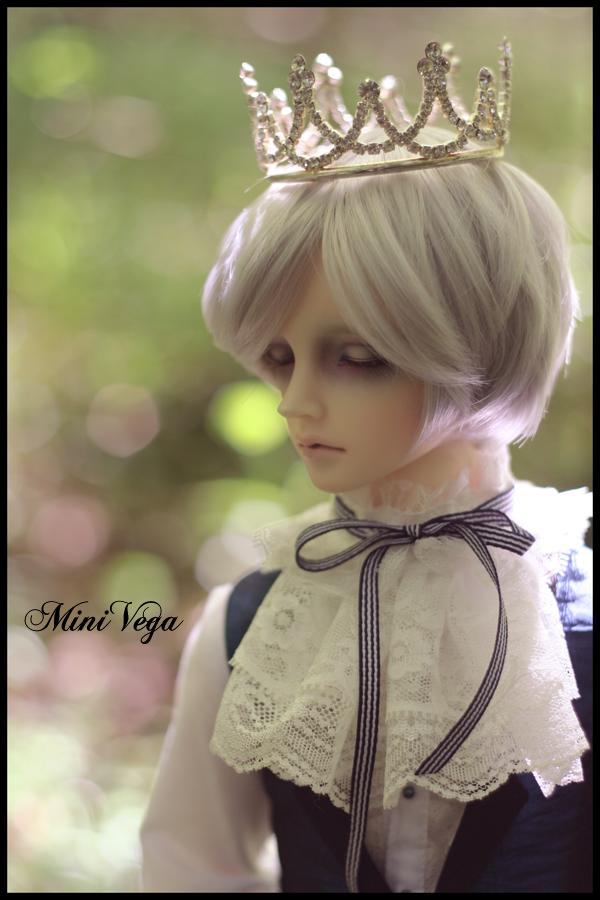 Prince des Bois I by MiniVega