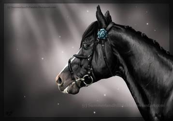 A stallions pride by SundaysPony