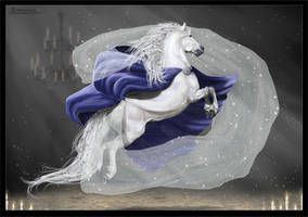 -I Winter King I- by SundaysPony