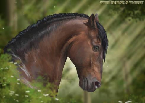 Kahn - Wild Horses Valley - Webgame