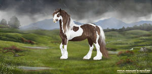 'Stormy' for Wild Horses Valley (FREE horse game)