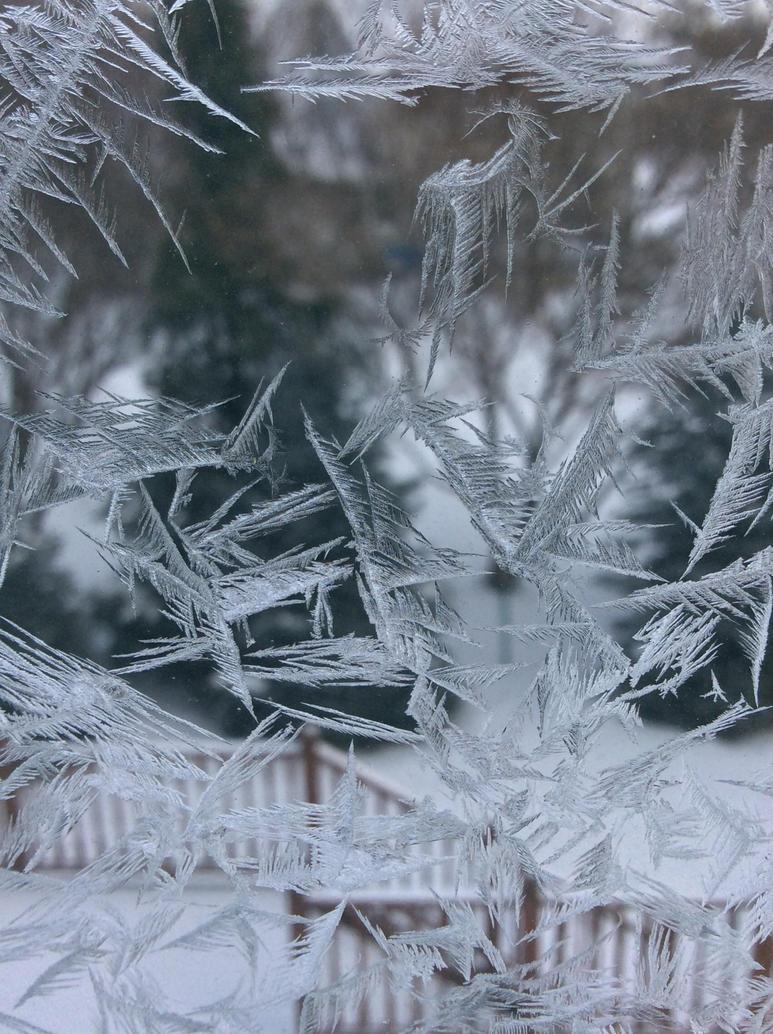 Frost Bitten by Skyangel280
