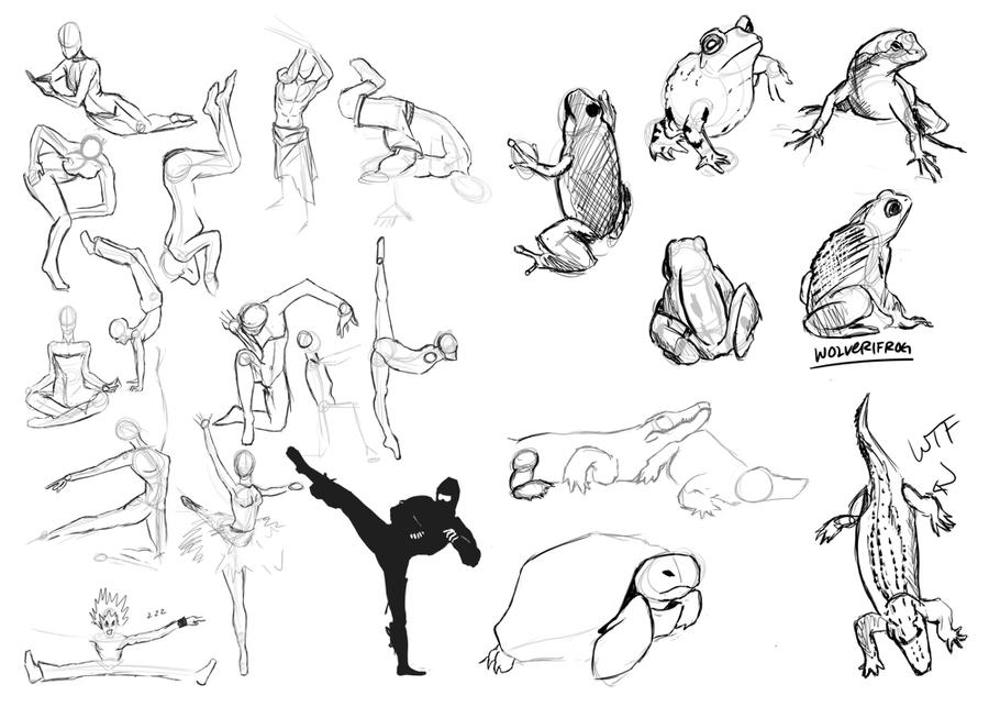 Figure Drawing: Poses and Animals 1 by raydarkwolf on ...