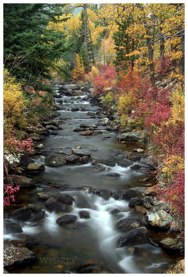 Lower Crazy Woman Creek by wyorev