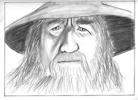 DF - Portrait - Gandalf by JustinGreene