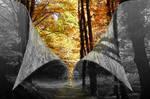 Hope Beyond the Grey by ravinsilverlock