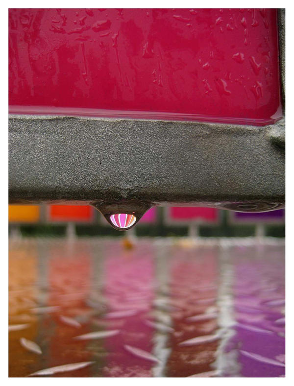 Rainbowdrop by Blue-eyed-Kelpie
