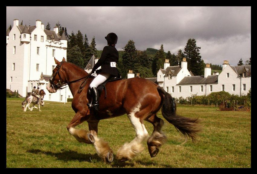 Scottish Equitation by Blue-eyed-Kelpie