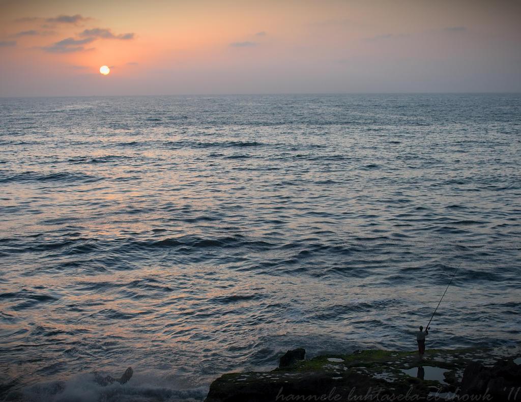 catching the sun by raido-ehwaz