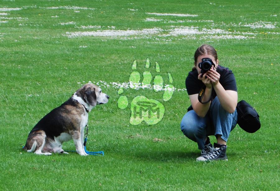 H-M-MPhoto's Profile Picture