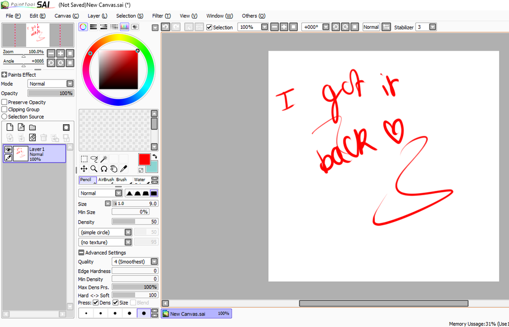 Paint Tool Sai Wont Save