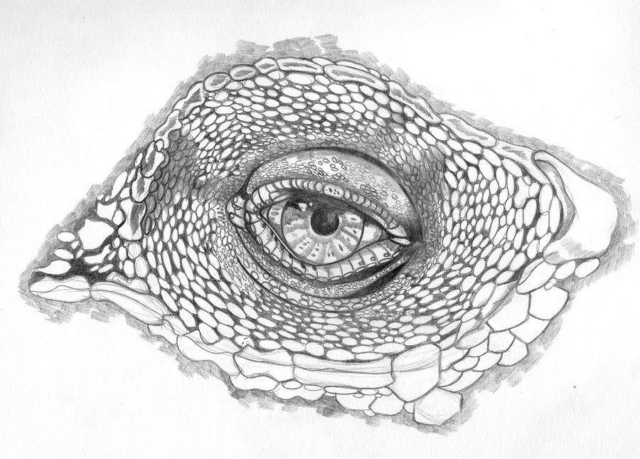 how to draw reptile skin