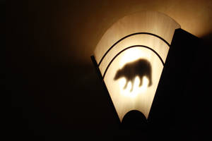 Bear Essence by Zamstrom