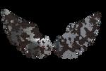 Rusty Metal Wings