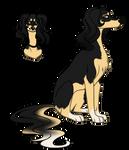 Saluki character 2