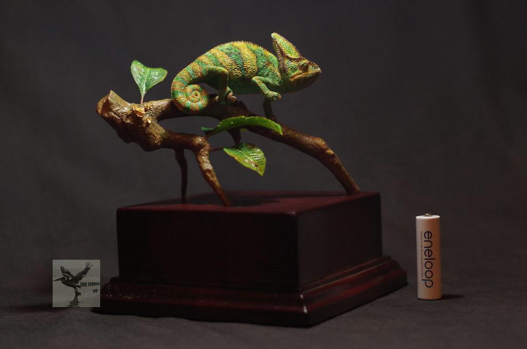 Veiledchameleon by DavidZhou