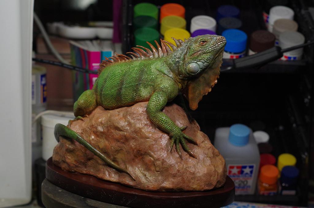 iguana by DavidZhou