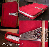 Mande's Book Commission by myceliae