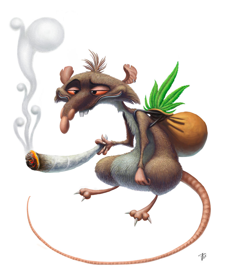 smoking_rat_by_nik159-d99l2pq.jpg