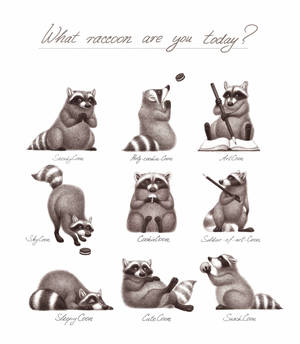 What trashpanda are you today?