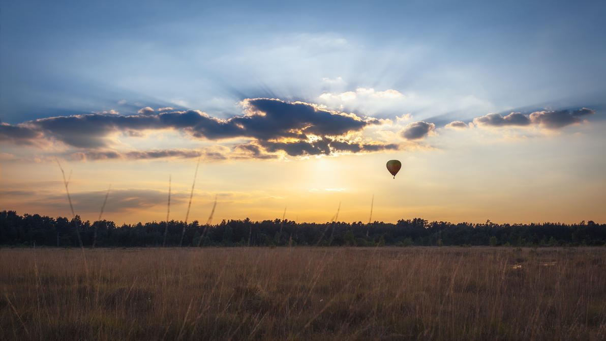 IMAGE: http://pre05.deviantart.net/4d14/th/pre/i/2017/150/e/e/the_golden_hour_of_ballooning_by_snomanda-dbaq6zj.jpg
