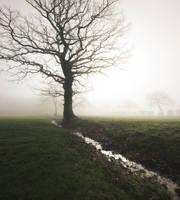 Life's a Ditch by snomanda