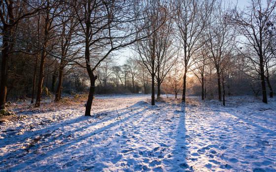 Light Snow by snomanda