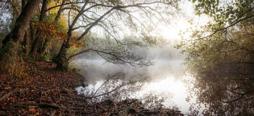 On Island Pond