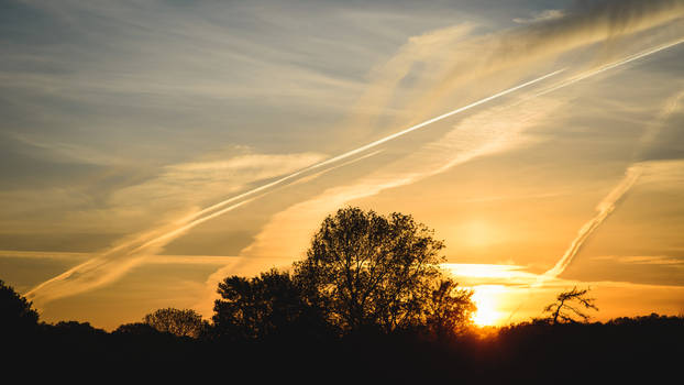 Sunset of the Vapour Trails