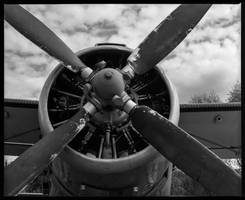 Antonov AN-2 by Roger-Wilco-66