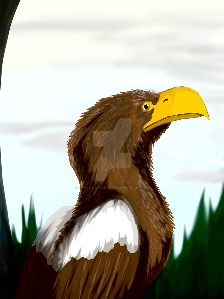 Stellar's Sea Eagle by Jawox-DragonQueen