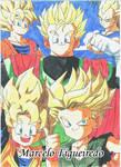 Dragon Ball Z Poster 5