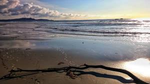 Beach Stick  by sethses1