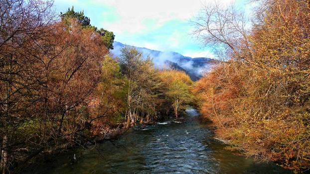 Carmel Valley River