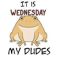 It is Wednesday my dudes