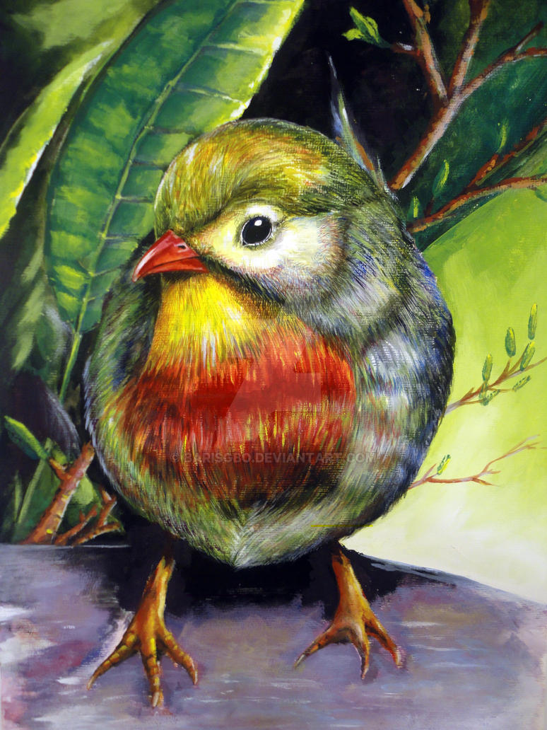 nightingale bird gouache study